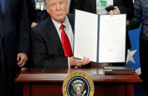 Donald Trump firma muro