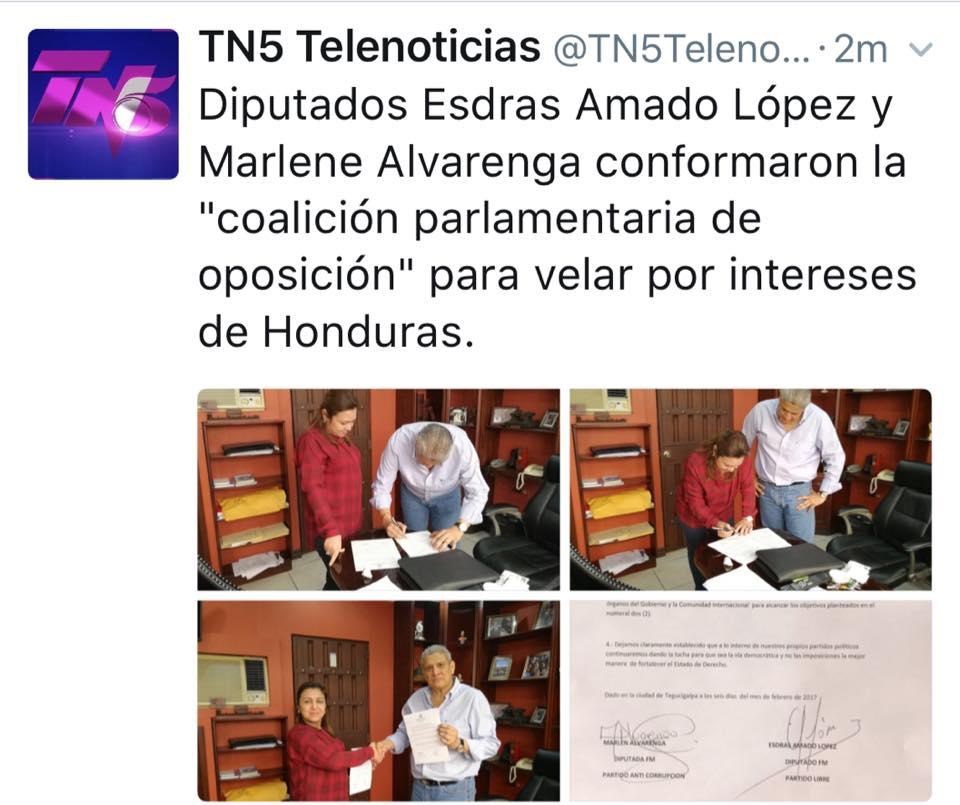 TN5 coalicion