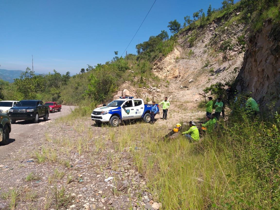 Culpables declaran a subcontratistas de EEH por tala ilegal de árboles en San Jerónimo, Comayagua - cholusatsur.com